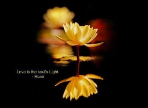 Love is the Soul's Light - Rumi Quotes
